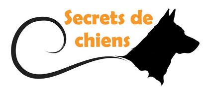 Secrets de Chiens