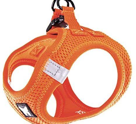 Martin Sellier Harnais Chien Mesh Haute qualité à répartition Uniforme Grand Confort Boucle Rapide Bandes réflechissantes (L, Orange)