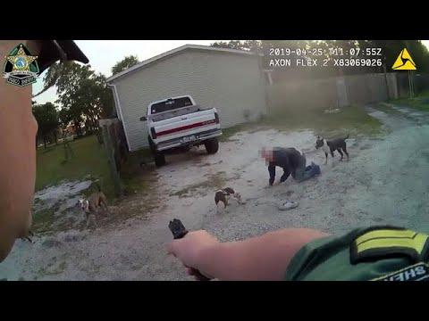 Le propriétaire d'un chien affirme que l'adjoint n'avait pas le droit de tirer sur son chien après des attaques de pit-bull.