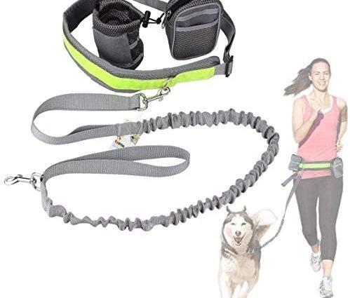 Cadrim Kit de Laisse de Chien Courir Idéal pour Course à Pied, Jogging et Marche -Laisse Mains Libre, Deux Pochettes, Ceinture Réglable Haute