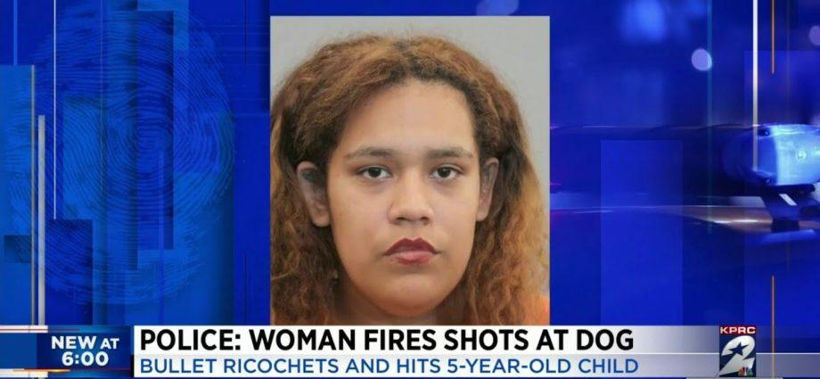 Police : Une femme tire sur un chien, mais la balle ricoche et touche un enfant de 5 ans.
