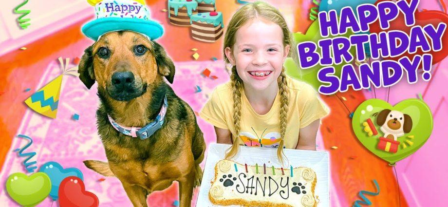 La fête d'anniversaire de notre chien ! !!