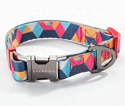 Everking Collier pour chien, réglable, moderne, multicolore, pour les chiens de grande, moyenne et petite taille, respirant Collier pour chien en nylon.